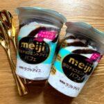 チョコミント好きにはたまらん♪久しぶりに食べたアイス